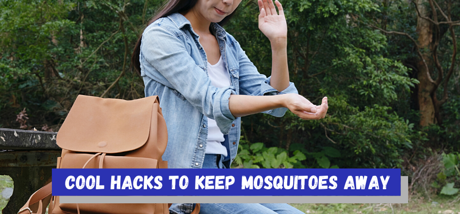 Interesting Ways To Get Rid Of Mosquitoes